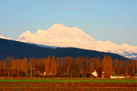 Mt Baker and Farms